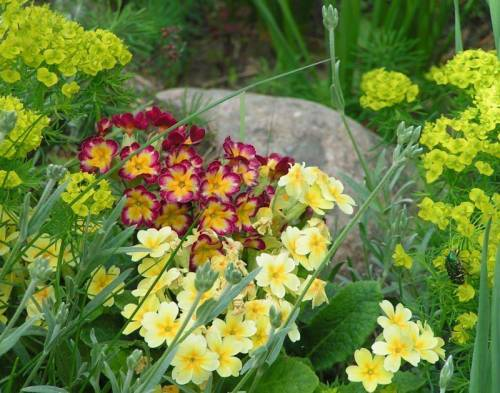 Горка цветочная альпийская горка