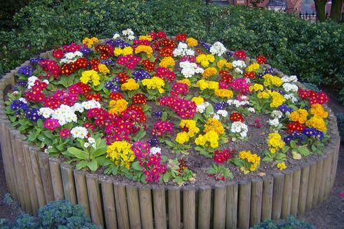 Оформление цветников и клумб