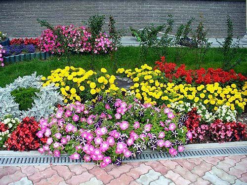 Цветники на даче своими руками фото